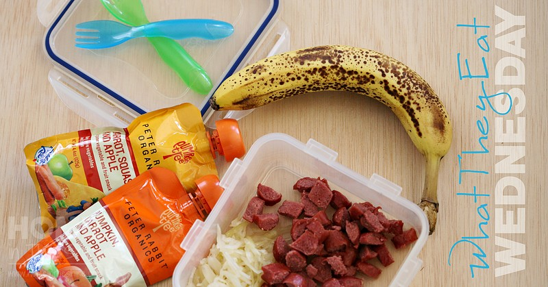 Toddler GAPS Lunch… To-Go!