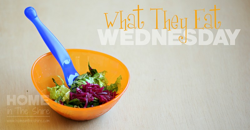 GAPS Toddler Lunch – What They Eat Wednesday