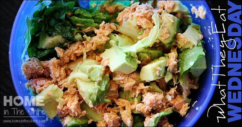 Quick Weekday Lunch for Kids – Salmon Salad
